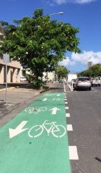Honolulu Bicycle Lane