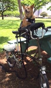 Zander Park Bike